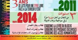 3e année des révolutions arabes: rassemblement à Strasbourg le 15 mars