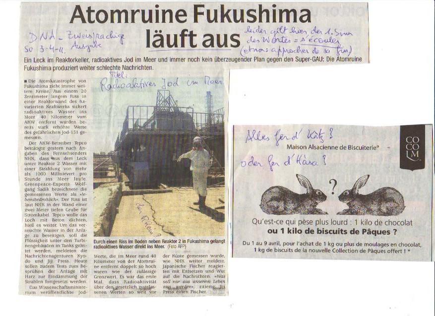 Atomruine Fukushima läuft aus