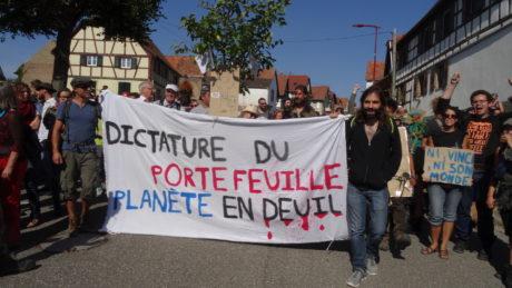 1500 manifestants à Kolbsheim constatent le massacre de la forêt par Vinci.