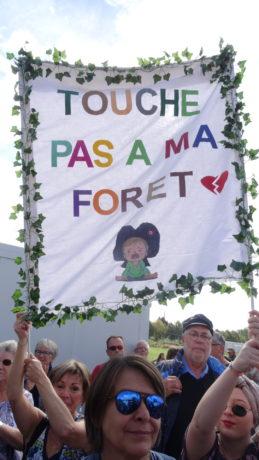 Marche à 500 dans la forêt du Krittwald massacrée à Vendenheim