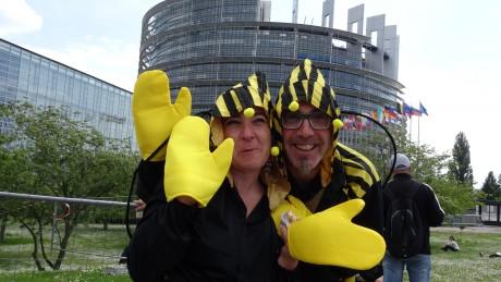 Strasbourg contre Monsanto: un cortège pollué par quelques fascistes