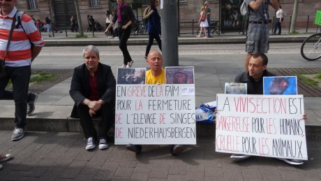 grève faim primatologie_feuille2chou