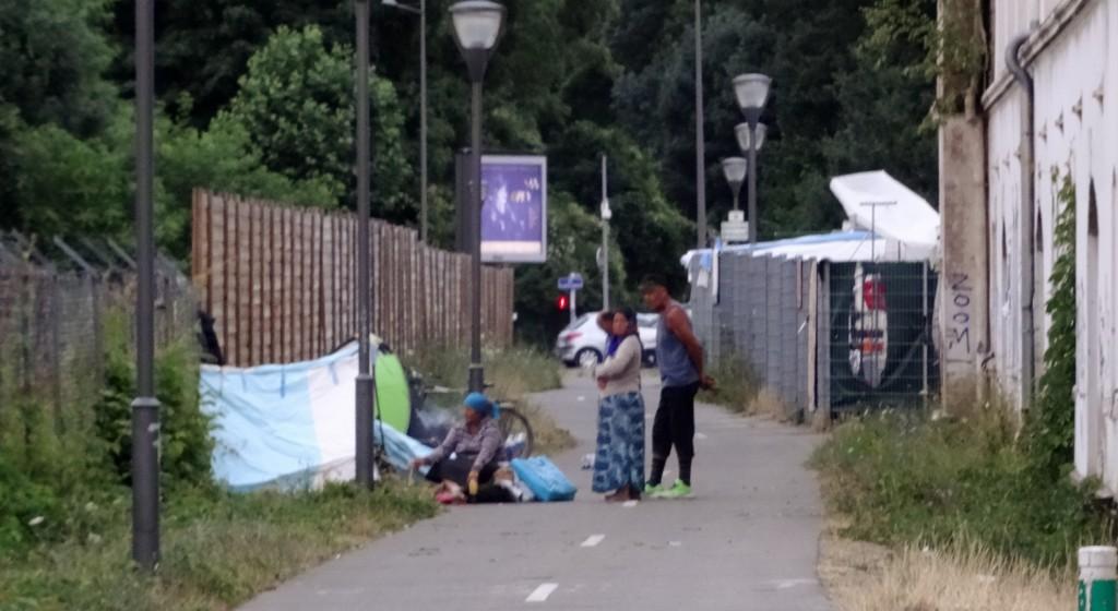 roms_remparts_4h43_feuille2chou