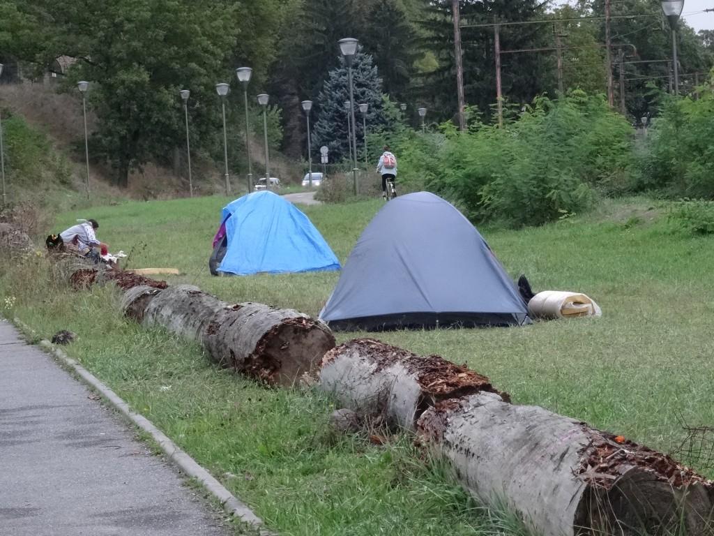 roms remparts strasbourg f2c