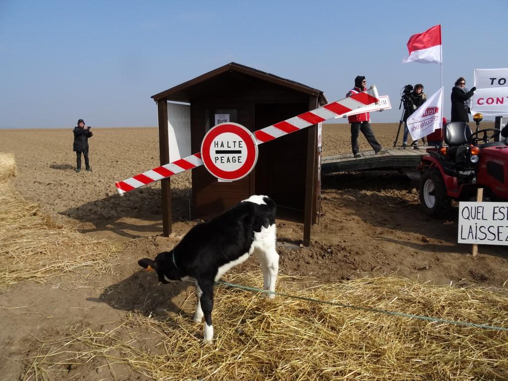 Contre le GCO, une nouvelle cabane à Stutzheim-Offenheim