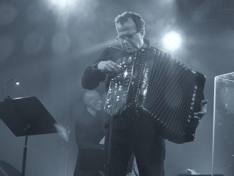 Wolfi Jazz 2013