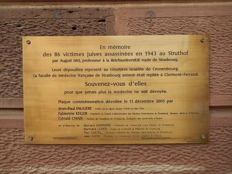 Commémoration 2013 devant l'Institut d'Anatomie normale et pathologique de Strasbourg