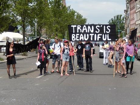 trans' strasbg 2014 f2c