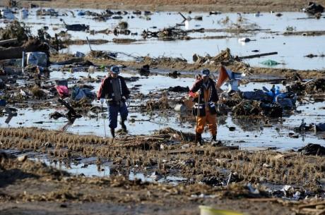 "L'infamie gagne du terrain: ""Penser avec Fukushima"""