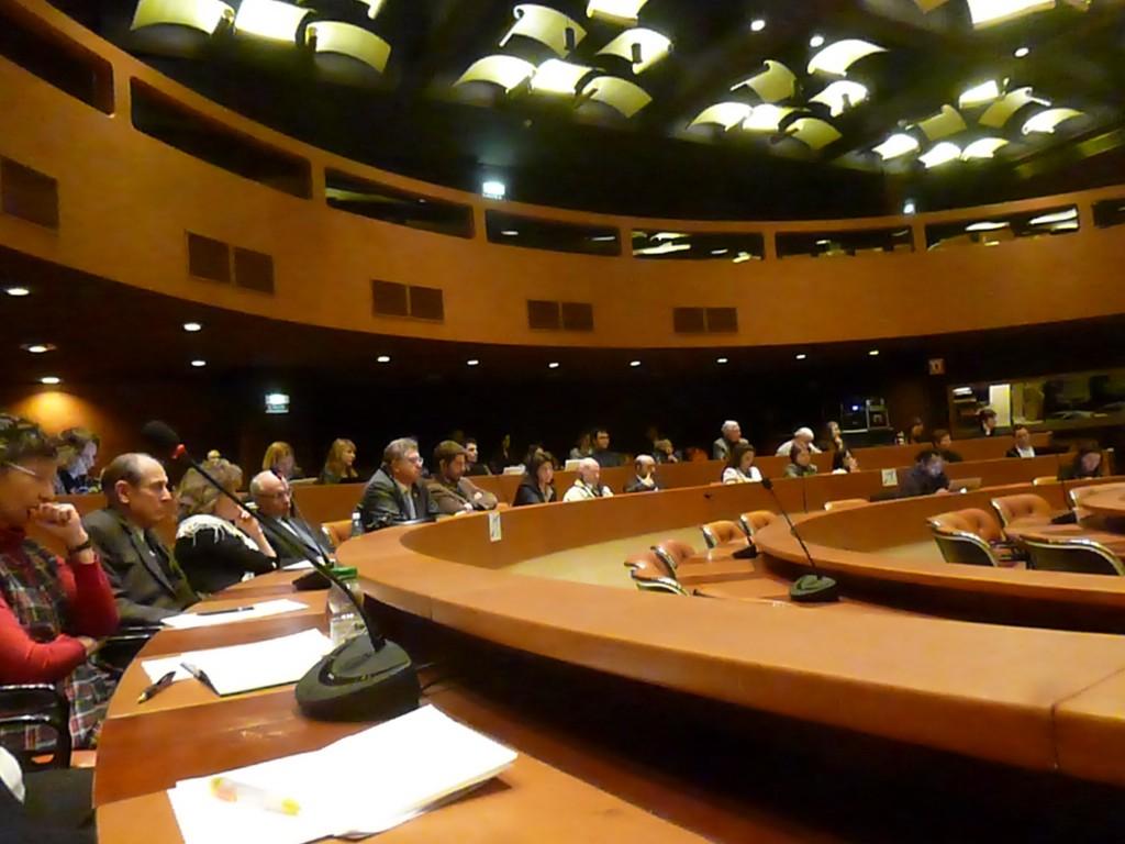 Dossier Roms Strasbourg/Hongrie/Europe