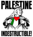 Palestine indestructible avatar-blog-1135976902-tmpphpjOwQvw.jpeg
