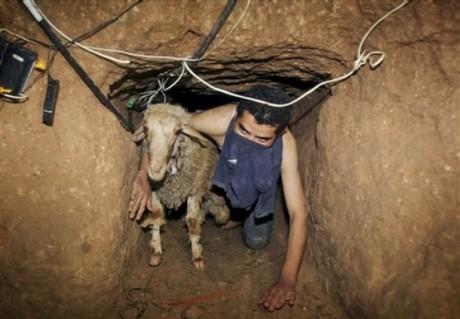 Gaza étouffé [United Nations]