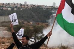 image002mandela palestine 2