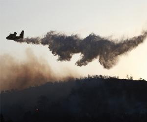 Incendie de Carmel : « Israël » n'est pas prêt à la guerre
