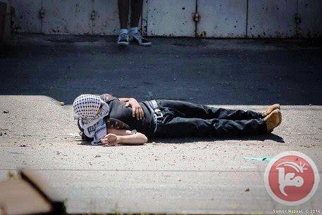 mort palestinien 2