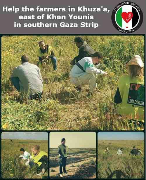 A toi Gaza