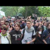 """""""Tout le monde déteste le PS"""" (vidéo)"""