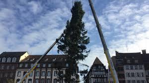 Crise à l'Office National des Forêts – Les forestiers en alerte rouge le jour de l'inauguration du Sapin de Noël de Strasbourg