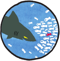 Traquons les requins !