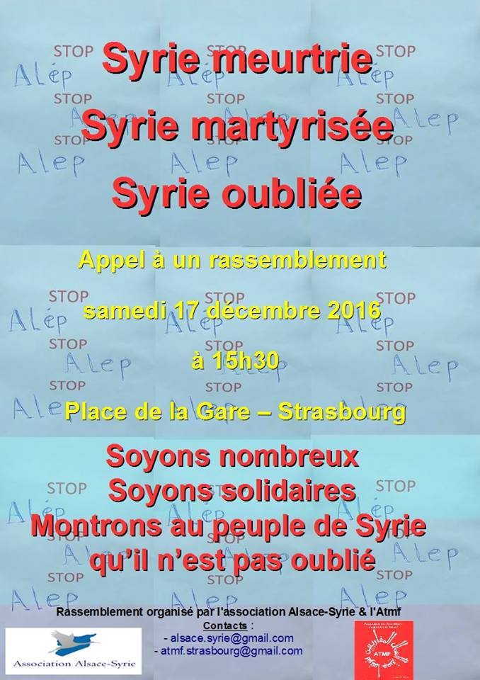 syrie-martyrisee