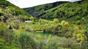 Menaces sur le massif forestier du Sprickelsberg: réunion publique à Wegscheid  le 25/01/19