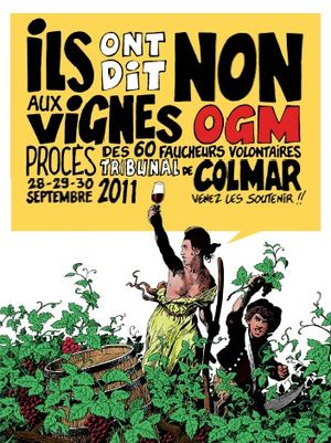 vignes OGM