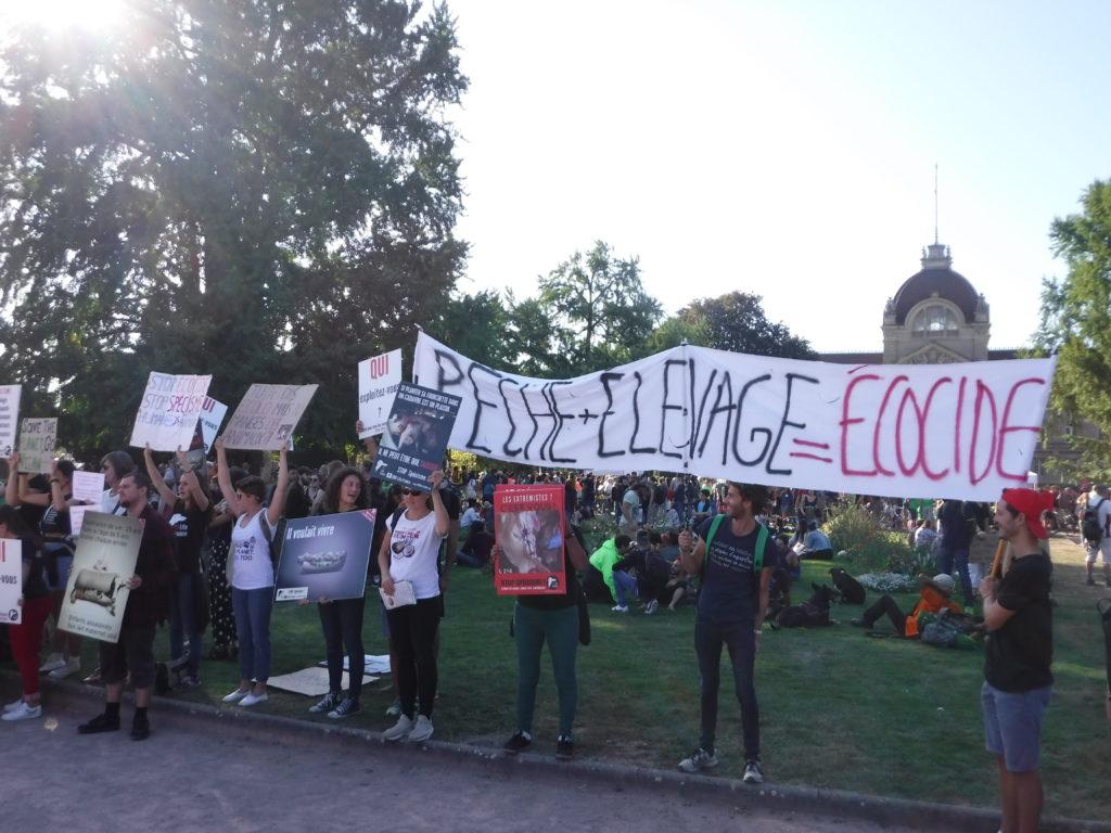 Marche pour le climat Strasbourg